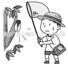 虫取りをする子供のイラスト 季節行事の無料イラスト素材集