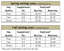Cow Feeding Chart All About Cow Photos