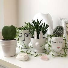 indoor plant pots how to pick a pot
