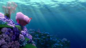 finding nemo discovering yourself in a sea of confusion just  finding nemo discovering yourself in a sea of confusion just keep swimming