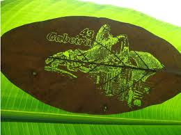 Business Cards Fashioned Out Of Laser Cut Leaves Make A Big Impression