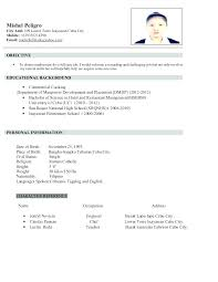 Samples Of Resume For Job Application Example Of Resume Application