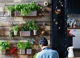 Indoor Rock Garden Decorating With Plants 10 Inventive Indoor Gardening Ideas Bob Vila