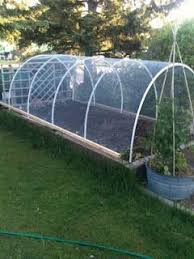 wire garden covers protection against hail and perhaps deer
