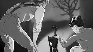 the black cat the summary  the black cat the summary