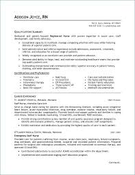 Rn Resumes Examples Classy Examples Of Nursing Resumes Unique Professional Nursing Resume