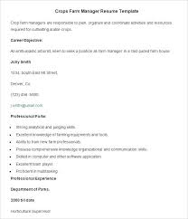 Resume Examples Free Download Professional Resume Example Resume