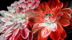 acrylic painting of a dahlia flower sd painting by summer lorde you
