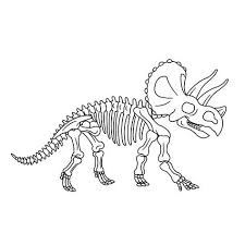 Fossielen En Dino Skeletten 0005 Animals Preschool Dinosaurs