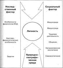Структурно логические схемы Схема Факторы формирования личности