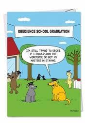 Funny Graduation Cards Wishes Nobleworks Com
