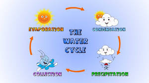 diagrams basic water cycle diagram image wiring diagram  basic water diagrams personal essay for college application topics research paper on e