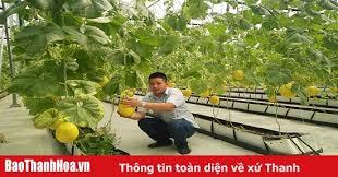 Hỗ trợ phát triển nông nghiệp thông minh