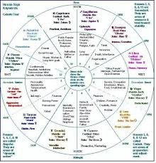 Astrological Natal Chart Wheel Learn The Houses Astrology Wheel Astrology Astrology