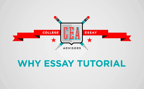 how to do admissions essay research why essays from michigan how to do admissions essay research why essays from michigan tulane and columbia