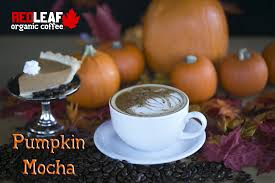 Dishes of vegetarian cuisine can be ordered at this bar. Pumpkin Mocha Red Leaf Coffee Redleafcoffee Organic Coffee Red Leaves Pumpkin