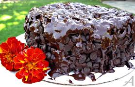 The Best Chocolate Cake Ever Ask Anna