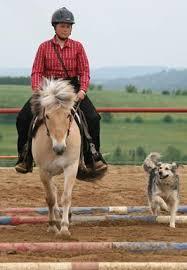 Platz Christine Margraf mit Pferd Kalle und Hündin Jana. 2. Platz Emmert Marita mit Pferd Chico und Hund Billy - christine_margraf_Buttenheim_20