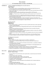 Download Quant Analyst Resume Sample as Image file