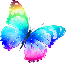 Butterfly pictures, Butterfly images ...