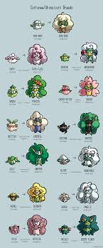 39 Rational Pokemon Cacnea Evolution Chart