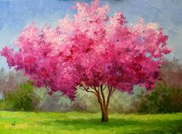 cherry blossom tree sold