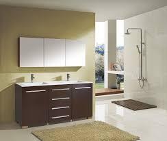 Horizontal Medicine Cabinet Bathroom Medicine Cabinet With Lights Amazon Freestanding Metal