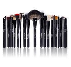 shany pro signature brush set