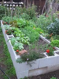 Small Picture 175 best Raised Garden Bed images on Pinterest Raised garden