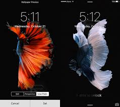 set live wallpaper on iphone 6s