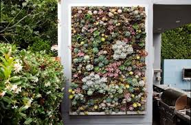 creative living wall