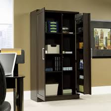 Pantry Cabinet: Sauder Pantry Cabinet with Sauder Storage Cabinet ...