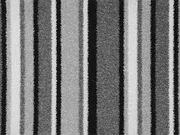 Funky Stripe. Grey Carpet.