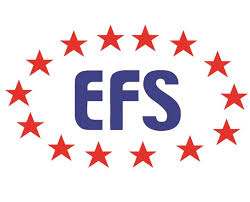 Image result for efs