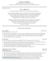 Skill Based Resume Template Word Competency Sample Job Description