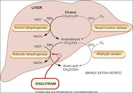 Disulfiram Reaction Disulfiram Reaction Causing Drugs Cialis Najtaniej W Polsce