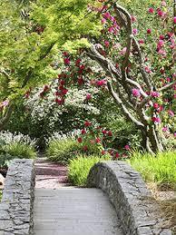 Small Picture Dallas Fort Worth and Arlington Garden Design