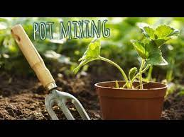 how to prepare potting soil for plants