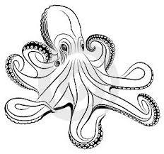Ilustrace16685437 Chobotnice Autor Flankerd
