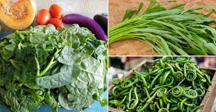 15 Little Known Leafy Vegetables Of India You Need To Try