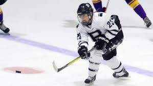 Women's Ice Hockey - New England Small College Athletic Conference