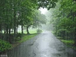 Kết quả hình ảnh cho trong nhà nhìn ra mưa