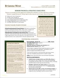 Executive Resume Samples Free And Financial Manager Resume Pdf New
