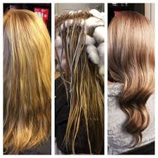 Schwarzkopf Gloss And Tone Color Chart Google Search