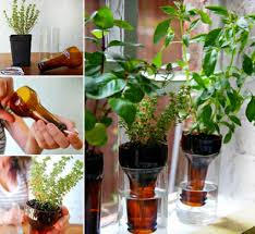 how to make recycled bottle herb garden