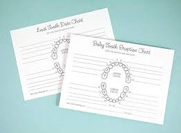 Which Baby Teeth Fall Out Chart Baby Tooth Lost Tooth Charts