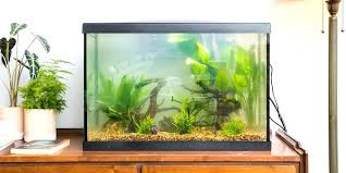 build your own aquarium filter the best fish tank heater light and accessories diy aquarium filter