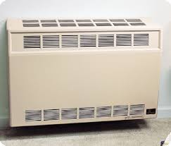 natural gas heaters for homes. Natural Gas Heaters For Homes P