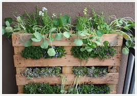 Small Picture Outdoor Herb Garden Design Markcastroco