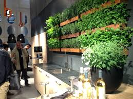 creative herb garden wall garden herb garden wall shelf